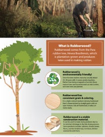 All About Rubberwood